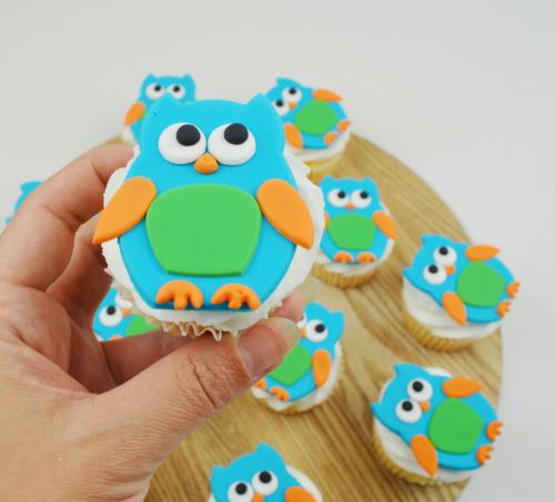 boy owl cupcakes