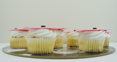 handbag cupcakes